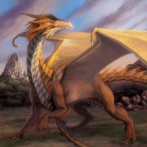 Dragones ocre